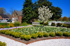 Image of the Woodburn Gardens in full bloom